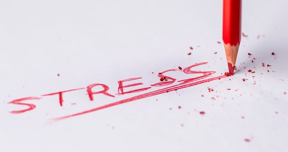 Stress: The Health Epidemic Of The 21st Century - image foodmatters-stress on https://www.deltafinancialgroup.com.au