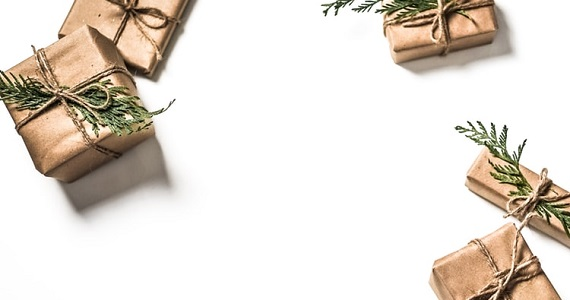 6 Sustainable Christmas Ideas - image christmas-nature on https://www.deltafinancialgroup.com.au